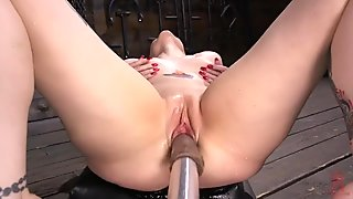 Arielle Aquinas Machine Fucked